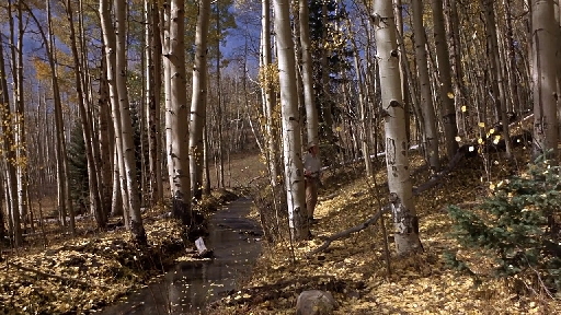 A frame from True Grit