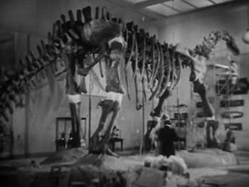 At the museum - the incomplete Brontosaurus