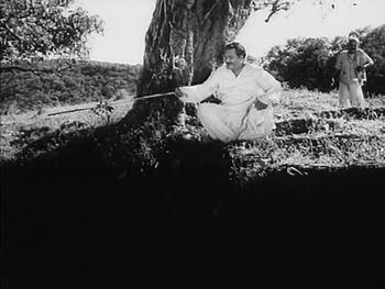 Bhanju Babu goes fishing
