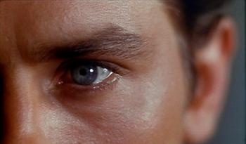 A closeup from Plein Soleil