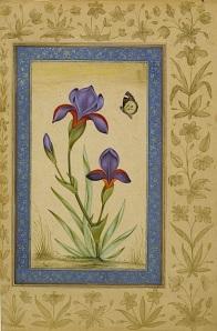 A Mughal miniature, a study of irises.