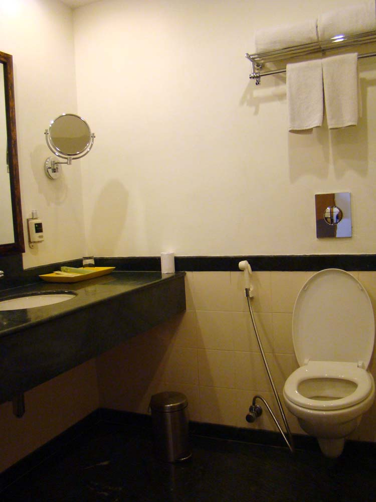Hotel review lemon tree premier dustedoff Premiere bathroom design reviews